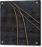 Golden Tracks Acrylic Print