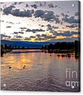 Golden Twilight Acrylic Print