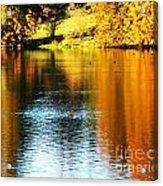 Golden Water Acrylic Print