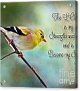 Goldfinch With Rosy Shoulder - Digital Paint And Verse Acrylic Print