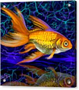 Goldfish Electric Acrylic Print