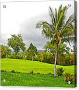 Golf Course Under Cloudy Skies Acrylic Print