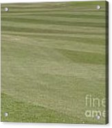 Golf Grass Acrylic Print