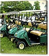 Golfers Take Your Pick Acrylic Print