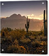 Good Morning Arizona Acrylic Print