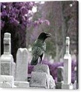 Gothic Purple Acrylic Print