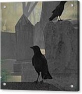 Gothic Winter Blackbirds Acrylic Print