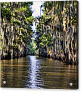 Government Ditch Acrylic Print