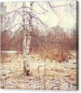 Grace In The Snow. Winter Poems Acrylic Print