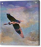 Grace Of The Wild Acrylic Print