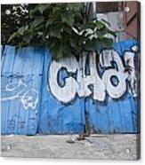 Graffiti-0579 Acrylic Print