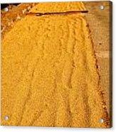 Grain Drying Acrylic Print