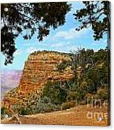 Grand Canyon - South Rim Acrylic Print