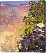 Grand Canyon 55 Acrylic Print