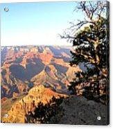 Grand Canyon 63 Acrylic Print