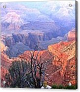 Grand Canyon 67 Acrylic Print