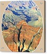 Grand Canyon 77 Acrylic Print