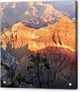 Grand Canyon 83 Acrylic Print