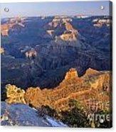 Grand Canyon Arizona Acrylic Print