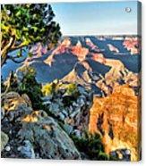 Grand Canyon Ledge Acrylic Print
