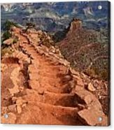 Grand Canyon South Kaibab Trail And Oneill Butte Vertical Acrylic Print