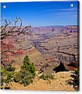 Grand Canyon South Rim Trail Acrylic Print