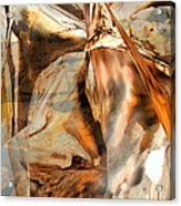 Grand Canyon Up Close And Personal Acrylic Print by Judy Paleologos