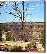 Grand Canyon View 6 Acrylic Print