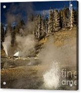 Grand Geyser Group Acrylic Print