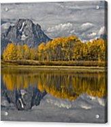 Grand Teton Gold Acrylic Print