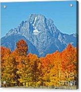 Grand Teton National Park 2 Acrylic Print
