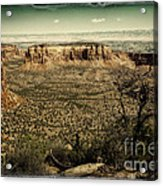 Grand View Acrylic Print