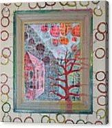 Grandma In A Tree - Framed Acrylic Print