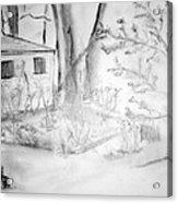 Granpa's Backyard IIi Acrylic Print