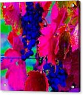 Grape Acid Acrylic Print