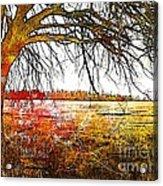 Graphic Tree Acrylic Print