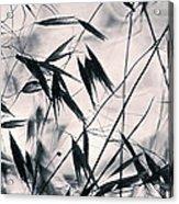 Grass 2 Acrylic Print