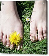 Grass Between My Toes Acrylic Print by Stephen Norris