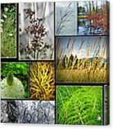 Grass Collage Variety Acrylic Print
