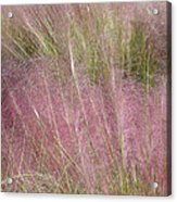 Grass Photography - Soft - By Sharon Cummings Acrylic Print
