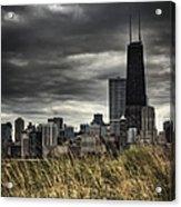 Grasses Along The Skyline Acrylic Print