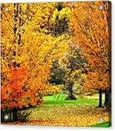 Grassy Autumn Road Acrylic Print