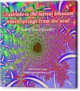 Gratitude Is The Fairest Blossom Acrylic Print