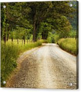 Gravel Road In The Smokies Acrylic Print by Andrew Soundarajan