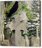 Graveyard Occupant Acrylic Print