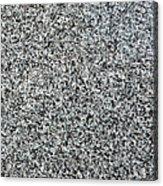Gray Granite Acrylic Print