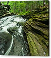 Waterfall - Grayville Everlasting Acrylic Print