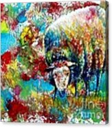 Grazing Sheep Acrylic Print