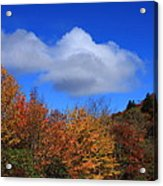 Great Balsam Mountains In The Fall Acrylic Print