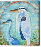 Great Blue Herons Seek Freedom Acrylic Print